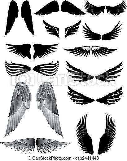 Wing silhouette - csp2441443