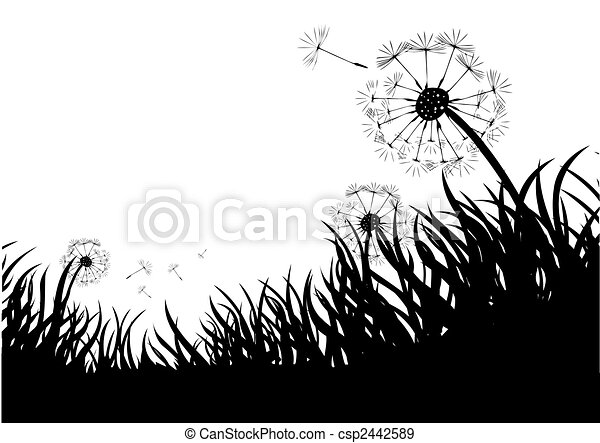 Flowing Dandelions - csp2442589