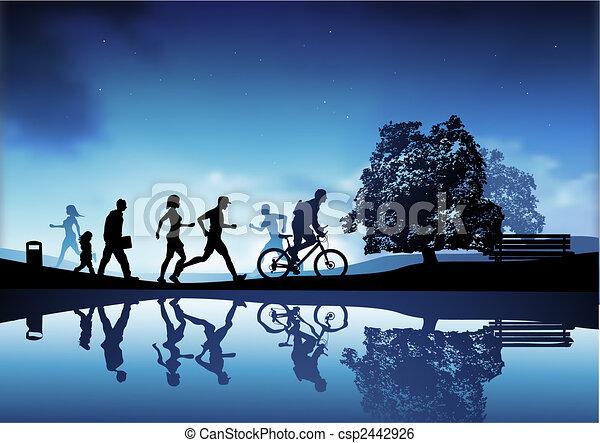 Evening Park Scene - csp2442926