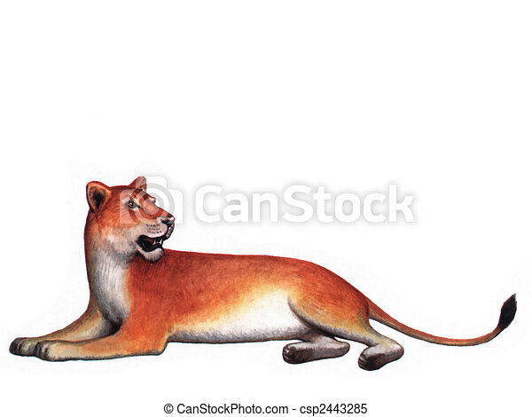 Lioness Clipart and Stock Illustrations. 649 Lioness vector EPS ...