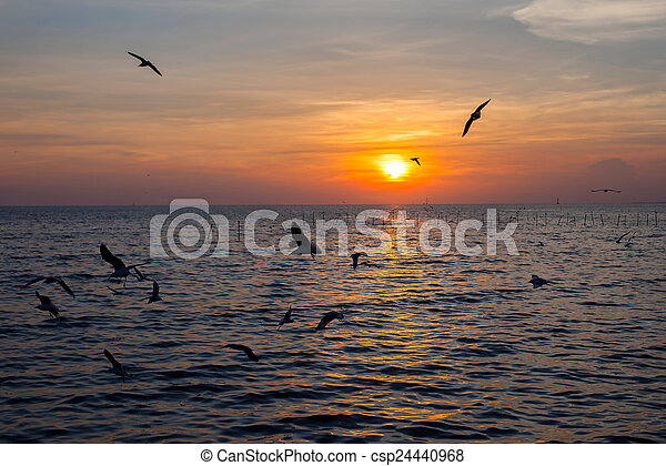 Tranquil scene with seagulls flying at sunset