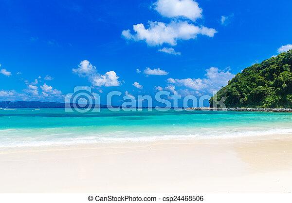 Dream scene. Beautiful white sand beach, the tropical sea . Summ