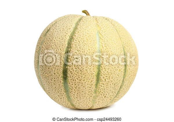 Cantaloupe melon  - csp24493260