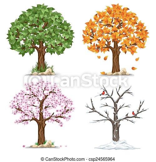 Clip art vecteur de quatre saisons arbre dans quatre saisons csp24565964 - Dessin 4 saisons ...
