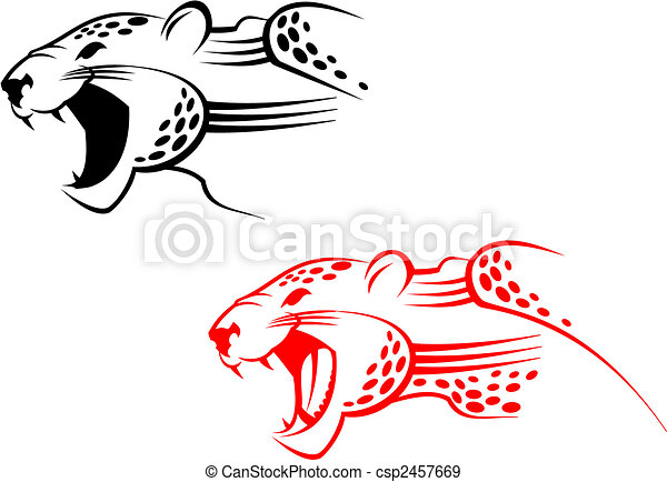 Wildcat sign - csp2457669