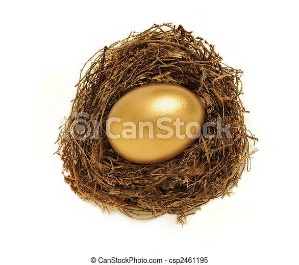 Golden nest egg representing retirement savings - csp2461195