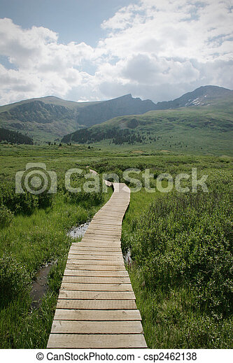 Colorado Summer Mountain Backcountry Scene. Great for themes of nature, summer, mountains, outdoor recreation, travel destinations, background scenics.