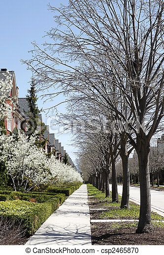 Row of townhouses and trees in spring - csp2465870