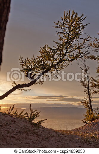 Olkhon Island - csp24659250