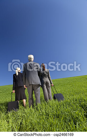 Concept shot showing three business executives, one male and two female, walking through a green field towards the horizon. Environmental, business and travel concepts, shot on location. - csp2466169