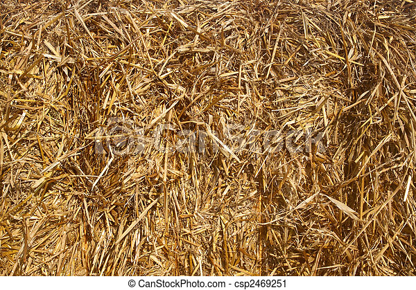 Close up of a straw bale. - csp2469251