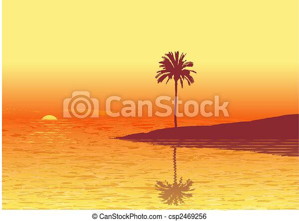 tropic beach - csp2469256
