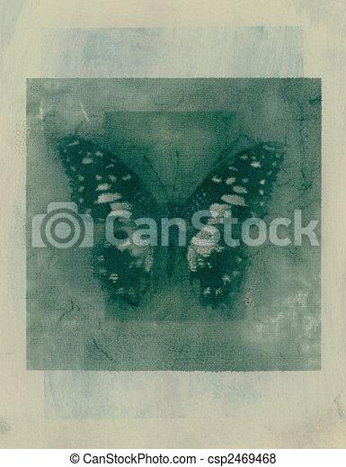 Subtle Butterfly - csp2469468