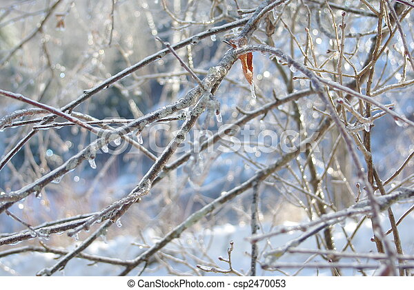 Vermont Ice Storm - csp2470053