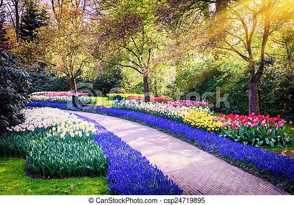 banque de photographies de printemps fleurs paysage. Black Bedroom Furniture Sets. Home Design Ideas