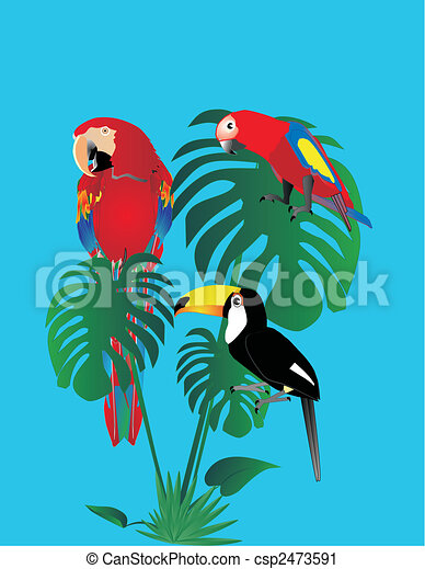 Parrots and tuscan sitting in a rain forest.. - csp2473591
