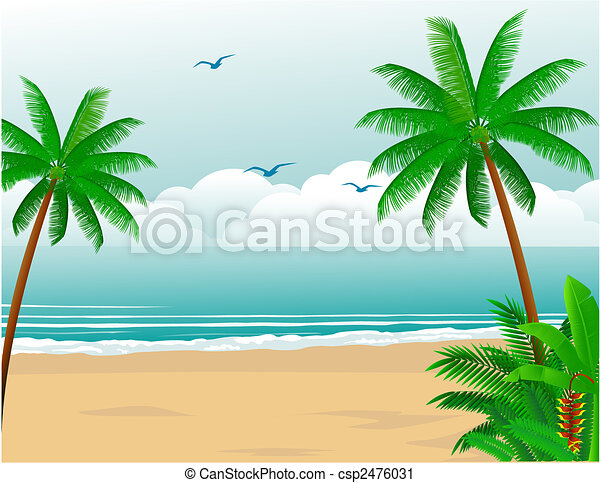 Tropical beach - csp2476031