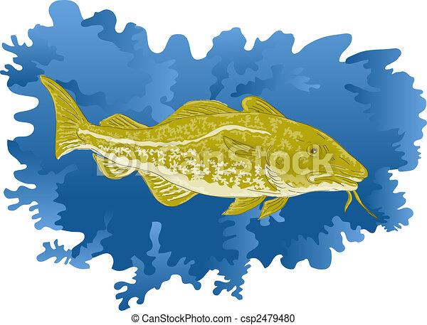 Atlantic cod fish - csp2479480