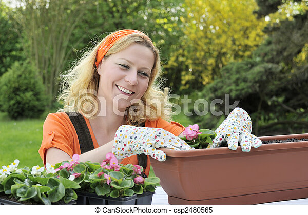 Woman planting flowers - csp2480565