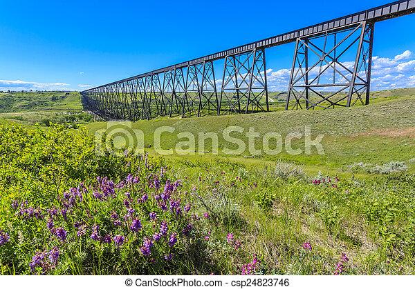 Tall Train Bridge