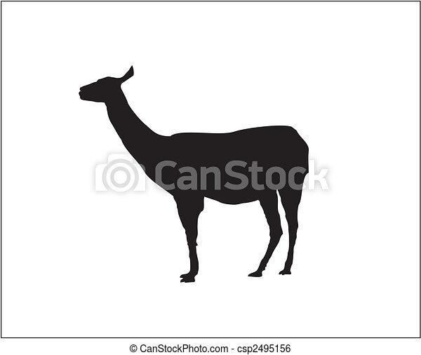 Lama - Vector - Silhouette - csp2495156