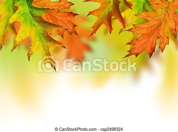 otoño, estación - csp2498324