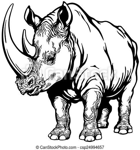 Rhinoceros Black And White