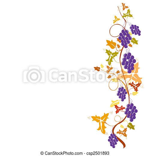 grapevine - csp2501893
