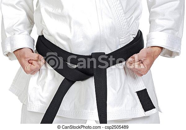 Martial arts pose - csp2505489