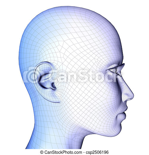 3d female face Wireframe - csp2506196