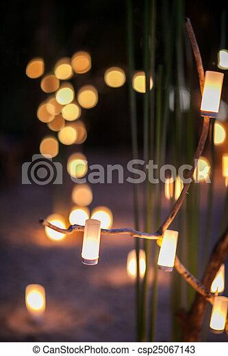 Romantic wedding candle light dinner.