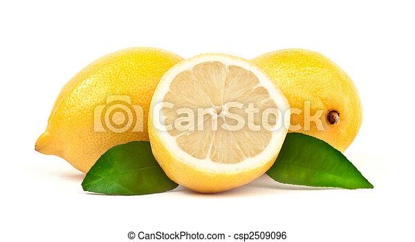 Lemon with green leaf - csp2509096