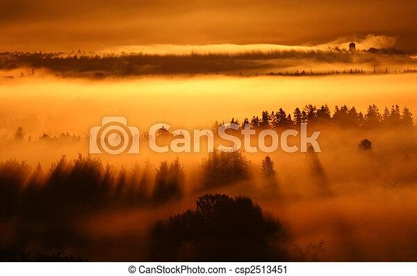 sunrise fog - csp2513451