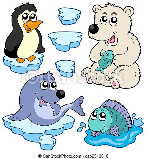 Arktyka, Zwierzęta, zbiór - csp2513618