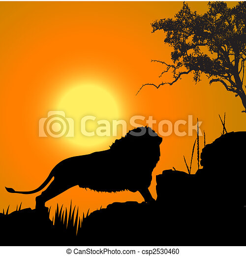silhouette view of lion, wildlife, sun background - csp2530460