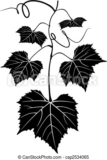 autumn, background, beautiful, black, branch, bunch, calligraphy, cluster, colorful, crop, curl, curve, decorative, design, eating, floral, food, fruit, grapes, grapevine, harvest, healthy, illustration, leaves, nature, ornate, pattern, plant, pretty, ripe, ripened, scenic, scroll, silhouette, stencil, summer, swirl, tree, vector, vine, vineyard, vintage, wine - csp2534065