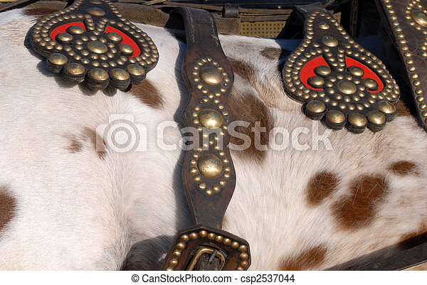 Cattle saddle detail. Leather and metal texture - csp2537044