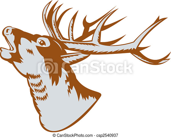 Illustrations de cerf t te rugir cerf illustration - Dessin de tete de cerf ...