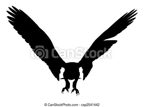 Eagle Illustration Silhouette - csp2541442