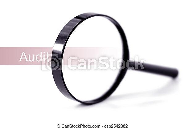 Audit - csp2542382