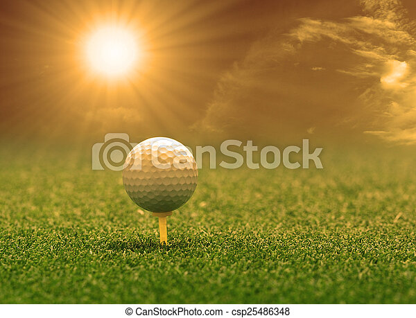 golf ball and tee on green grass