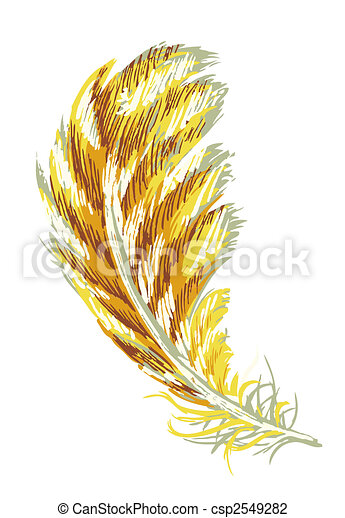 feather - csp2549282