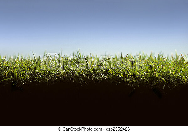 Cross section of lawn showing grass at ground level - csp2552426