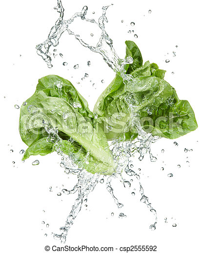 freshness of vegetables - csp2555592