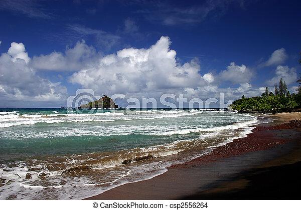 Hana's Beach, Maui Island, Hawaii - csp2556264