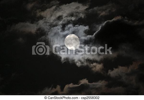 Lleno, luna, misterioso, blanco, nubes, contra, negro, noche, cielo - csp2558302