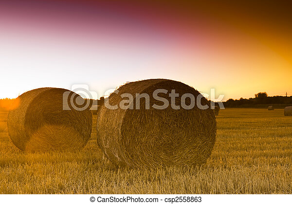 End of day over field with hay bale - csp2558863