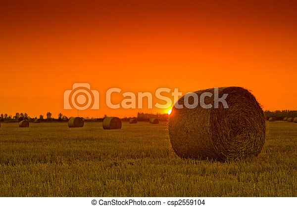 End of day over field with hay bale - csp2559104