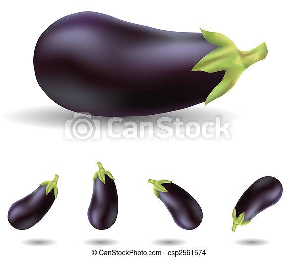 eggplants - csp2561574