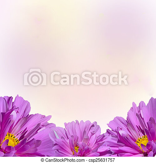 Closeup of beautiful pink flowers